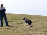 image weissenstein_april_2007_07-jpg