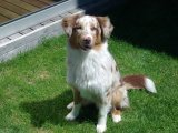 image yuma-rose-mai09-09-jpg