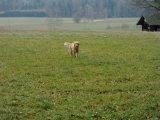 image yuma_januar_2008_11-jpg
