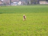 image yuma_086-jpg
